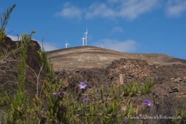 Lanzarote sostenible y punto.